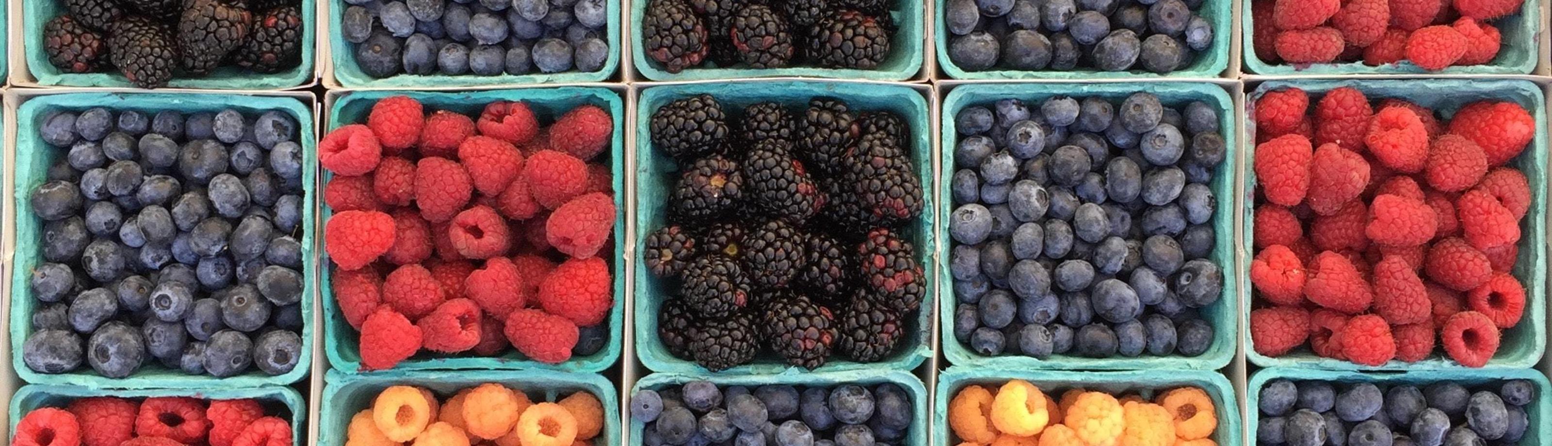 Wat is kwaliteit fruit